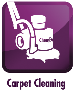 carpet cleaning irvine
